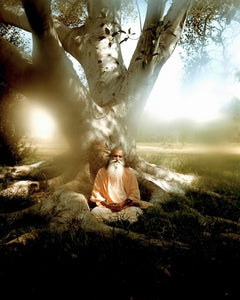 Photos of Swami Satchidananda