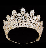 Very high sparkly crown / tiara gold or silver