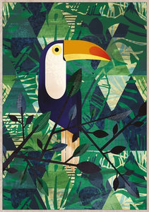 FRAMED CANVAS ART - TOUCAN