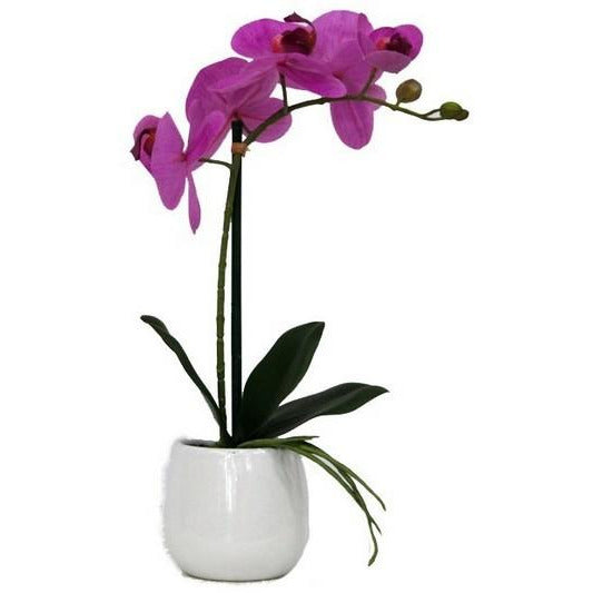 REAL TOUCH ORCHID 1 SPRAY PINK WITH WHITE POT - Luxe Living