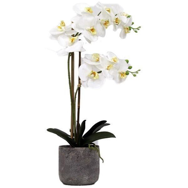 REAL TOUCH ORCHID 2 SPRAY WHITE WITH STONE POT - Luxe Living