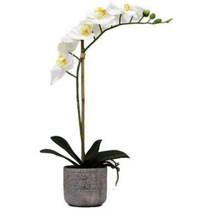 REAL TOUCH ORCHID 1 SPRAY WHITE WITH STONE POT - Luxe Living