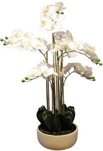 REAL TOUCH ORCHID 7 SPRAY - WHITE WITH CAESARSTONE POT