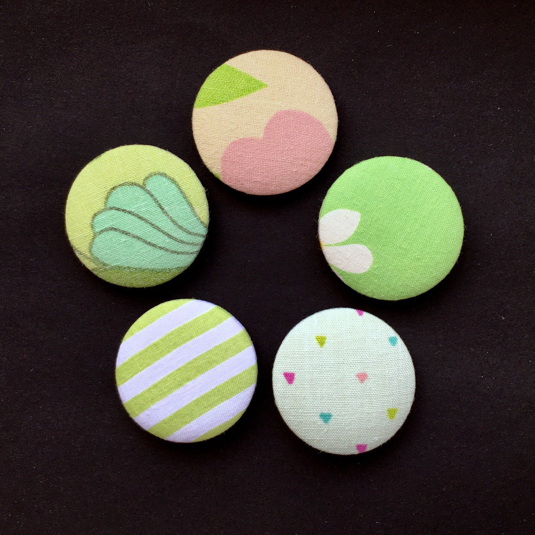 Refrigerator magnets / 5pack magneter