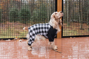 Dog Plaid Pajamas