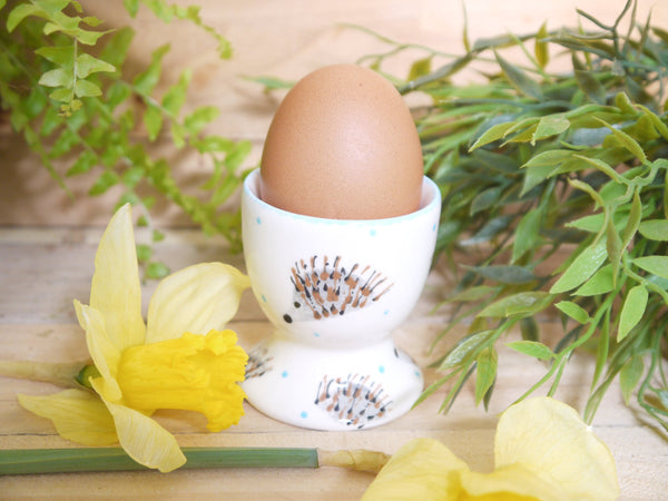 hector hedgehog egg cup