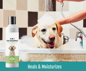 Opus Paws Oatmeal Dog Shampoo + Conditioner