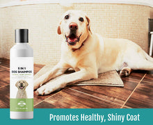 Load image into Gallery viewer, Opus Paws Oatmeal Dog Shampoo + Conditioner