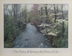 Harold Davis, The Dance of Spring is the Dance of Life Poster - RoGallery