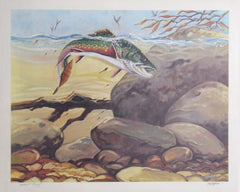 Bill Elliott, Rainbow Trout Lithograph - RoGallery