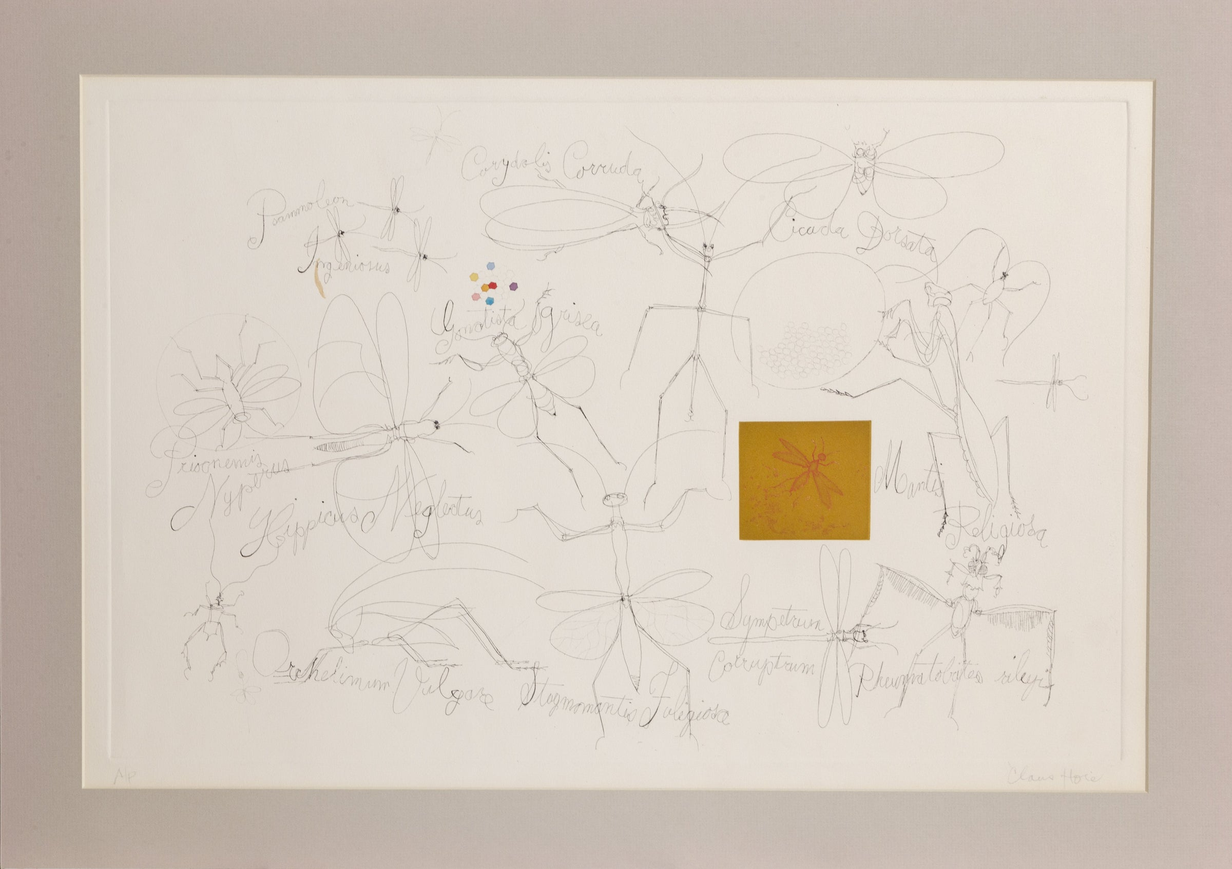 Claus Hoie, Insects 2 Etching - RoGallery