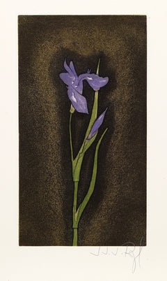J.J.J. Rigal, Iris Germanica from the Herbier Portfolio Etching - RoGallery