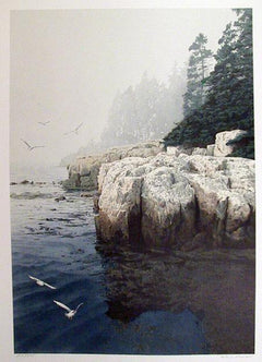 Helen Rundell, Gulls at Duck Harbor Lithograph - RoGallery