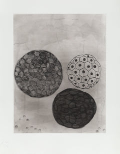 Terry Winters, Album 5 Etching - RoGallery
