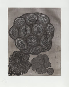 Terry Winters, Album 6 Etching - RoGallery