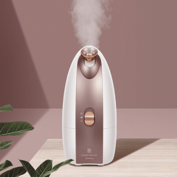 Facial Steamer