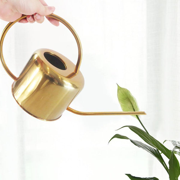 Elliptical Watering Can