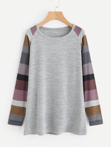Contrast Striped Raglan Sleeve Marled Knit Tee