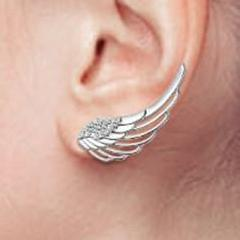 Women's Earring 925 Sterling Silver Earrings Ear Studs Ear Nail with Diamond