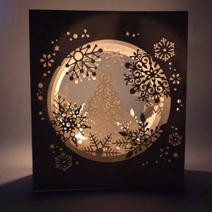 Snow shadow box