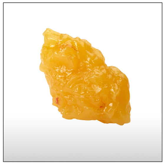 1 Pound of Fat Replica