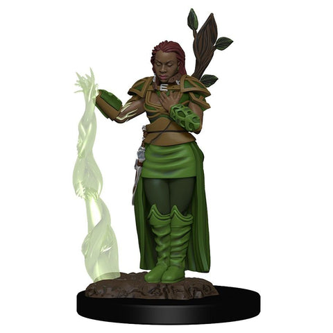 D&D: IR: Prem: Human Female Druid