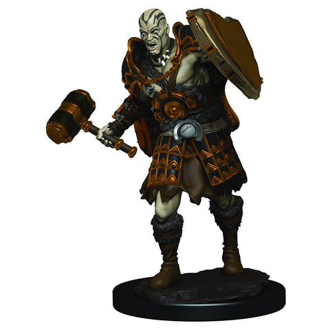 D&D: IR: Prem: Male Goliath Fighter