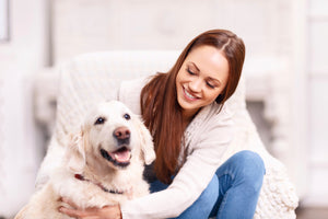 4 Tips To Keeping Your Dog Happy & Healthy!