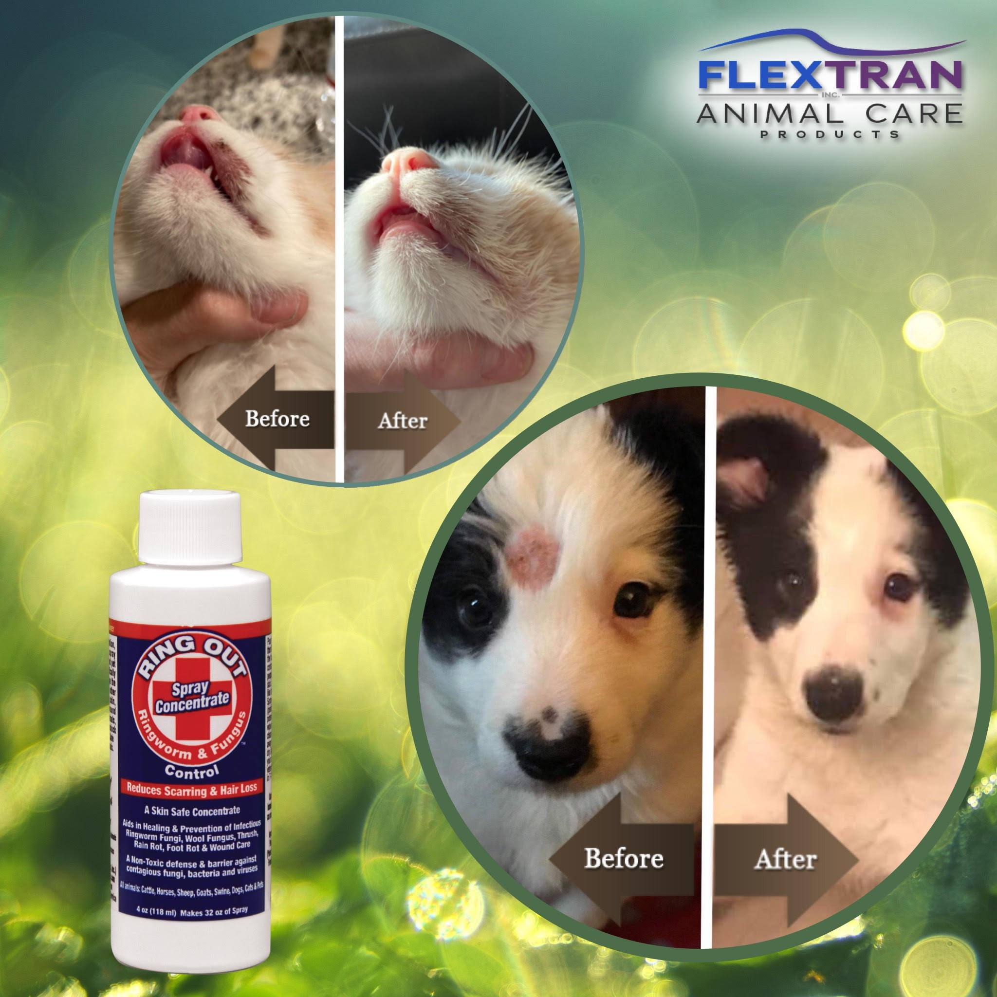 Ring Out Shampoo & Soap - Help Control Ringworm & Fungus in ALL Animals & Livestock