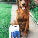 Urine Odor Remover For Pets - Gallons