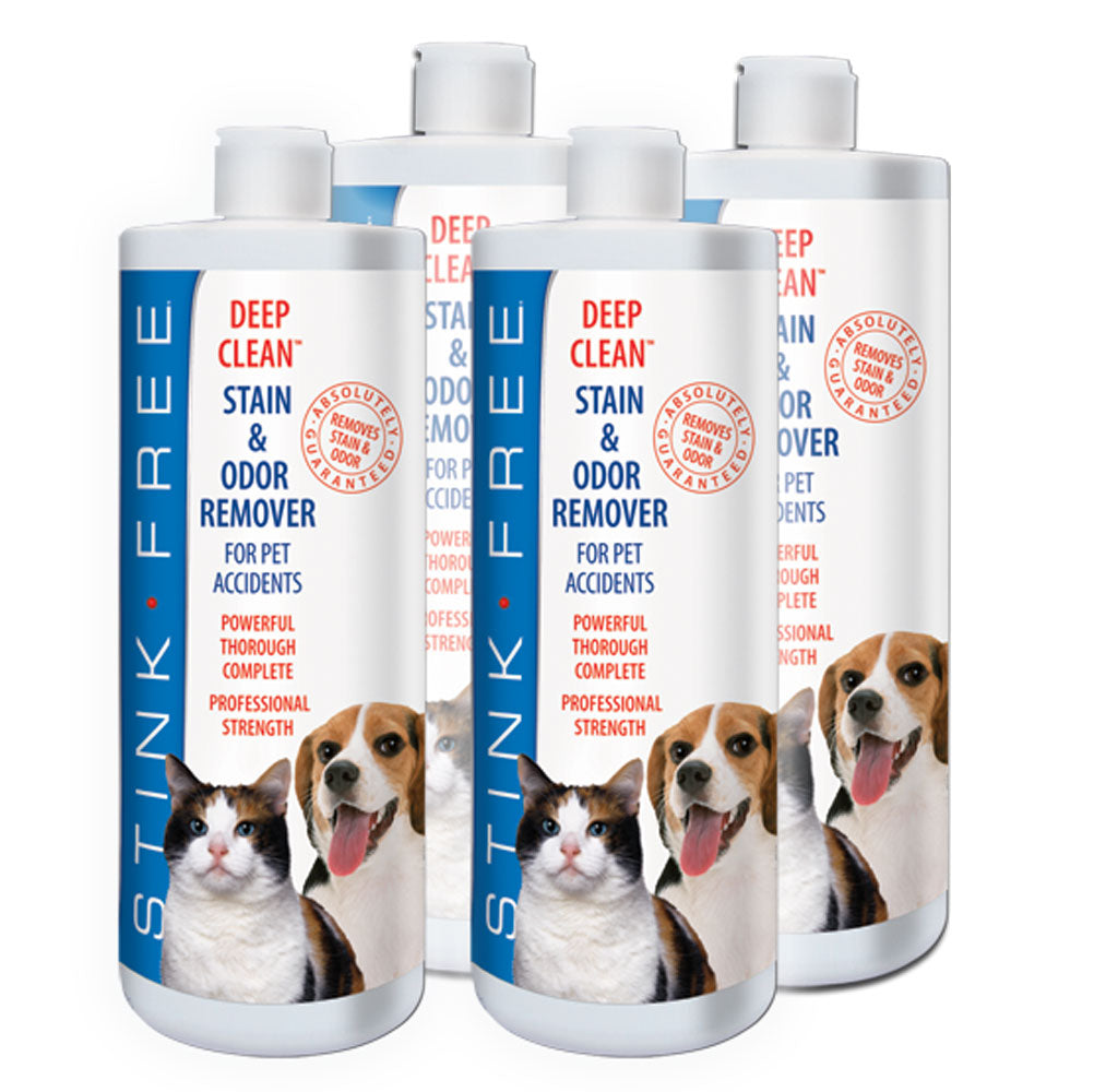 Deep Clean Carpet Stain & Odor Remover For Pets - Quarts
