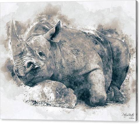 Black Rhino Watercolour Artwork  - Canvas Print