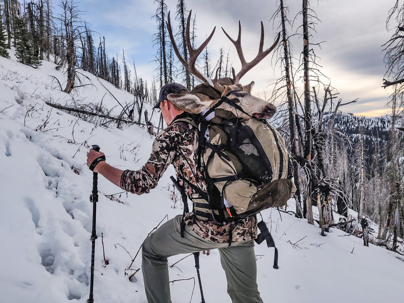 Should you Hunt with Trekking Poles?