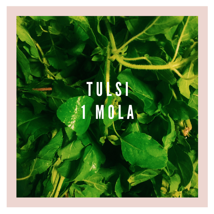 A tale of Tulsi