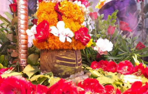 flowers for puja