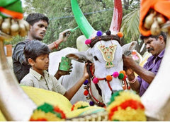 Puja, Prayer Services, Offerings for prayers, Pongal deities, Rose Bazaar