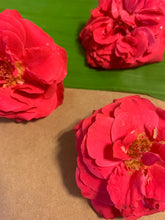 Load image into Gallery viewer, Pink paneer roses fragrant puja pooja flowers Rose Bazaar