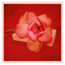 Load image into Gallery viewer, Lotus box subscription by Rose Bazaar