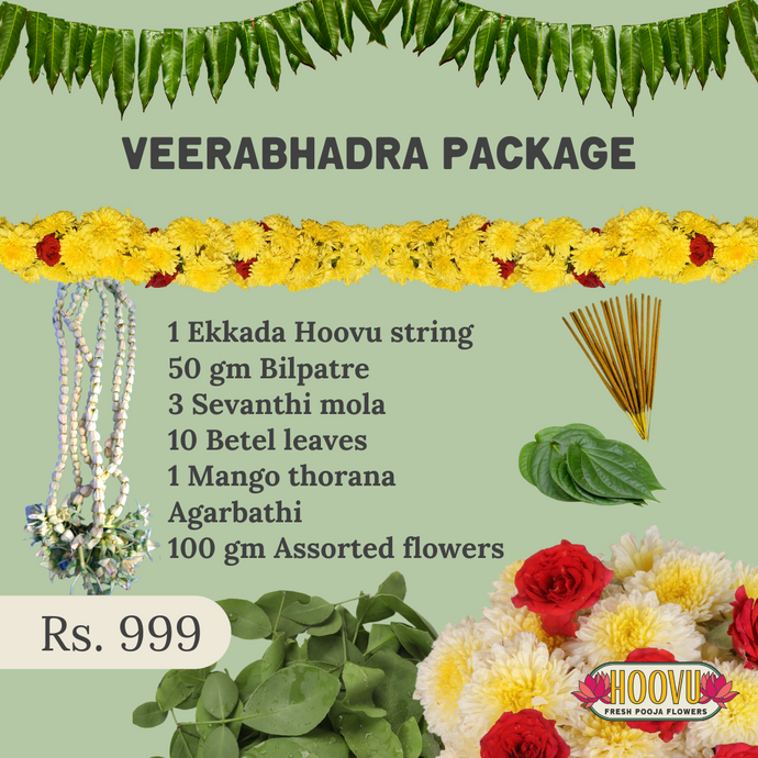 Veerabhadra package for Mahashivratri