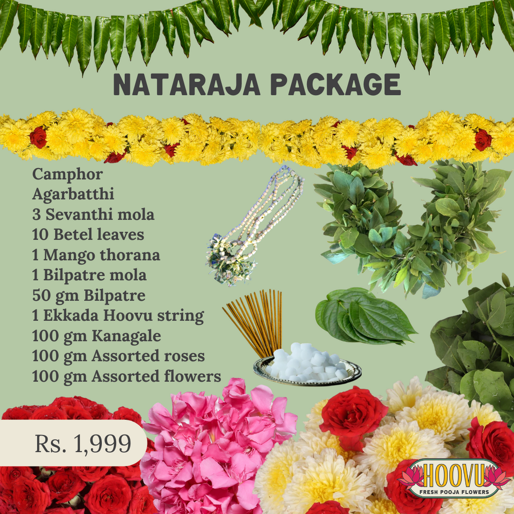 Nataraja package for Shivratri