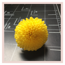 Load image into Gallery viewer, Sevanthi Chrysanthemum yellow farm fresh flower for Puja or Pooja Rose Bazaar Karuturi