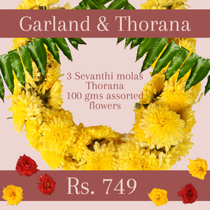 Mola and Thorana Package: Sevanthi
