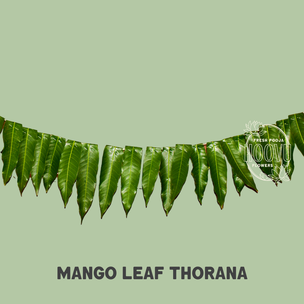 Mango Leaf Thorana 6ft - One time