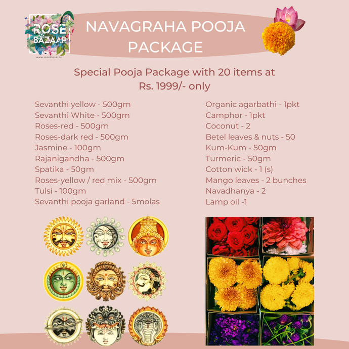 Navagraha Pooja Package