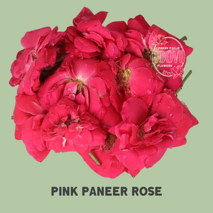 Paneer rose 100 grams - One time