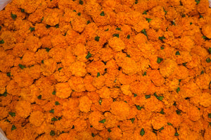 Marigold Puja or Pooja flowers garland from Rose Bazaar