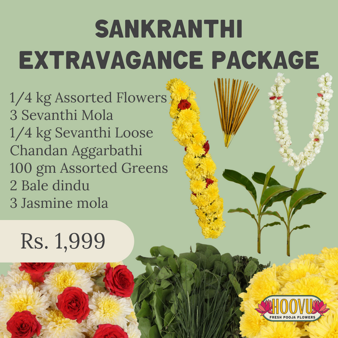 Sankranthi Extravagance Package - One Time