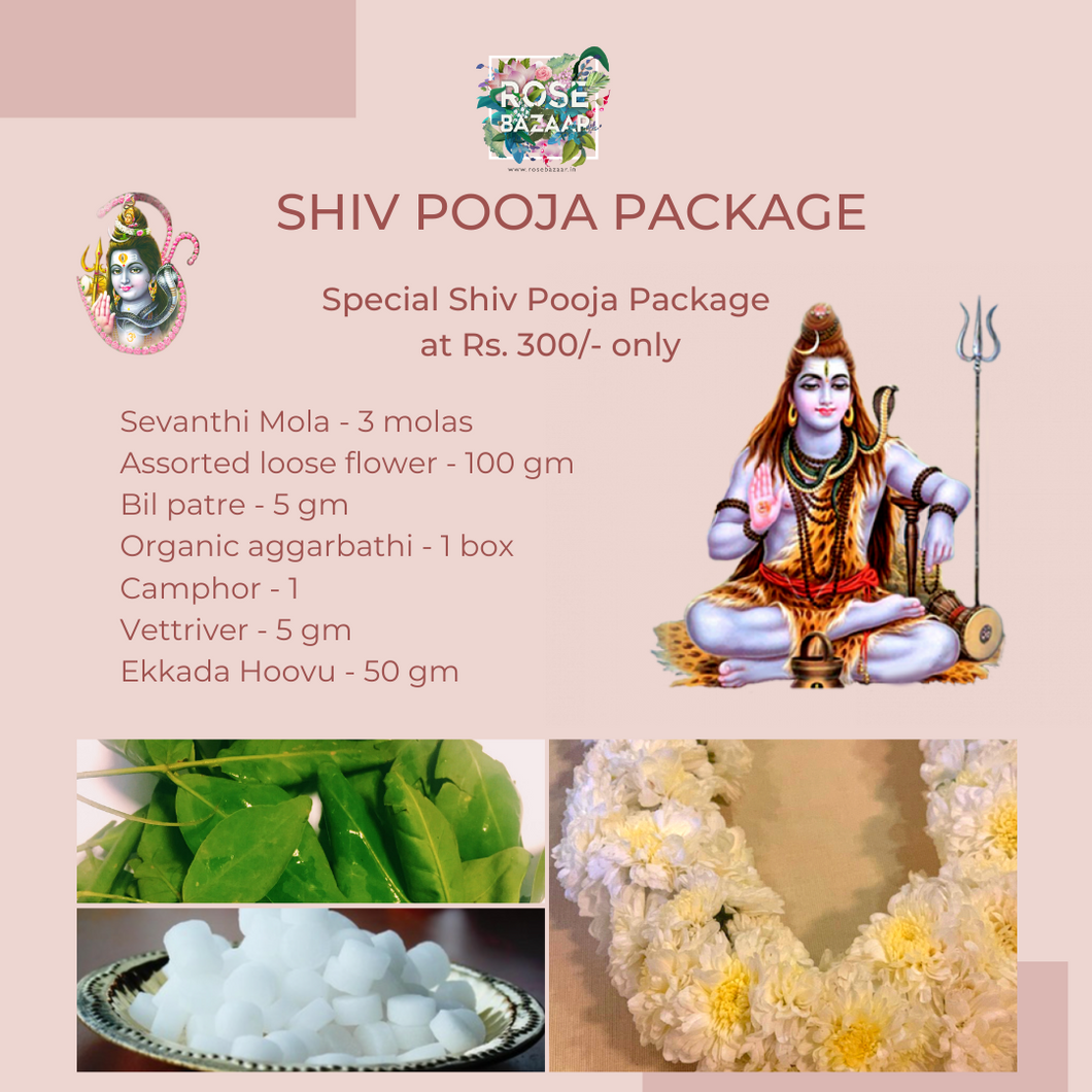 Shiv Pooja Package