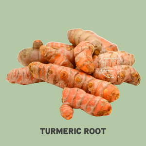 Turmeric Root 100 grams - One Time