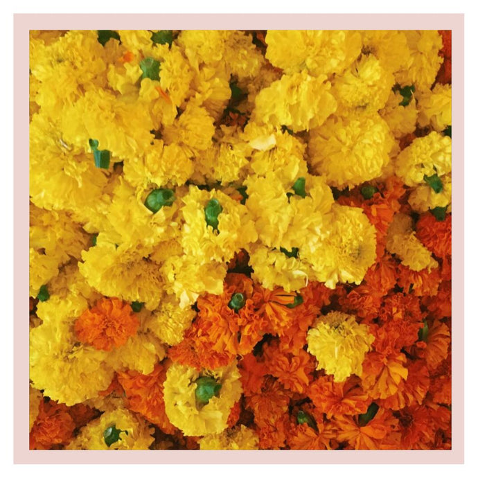 Marigold Puja or Pooja flowers from Rose Bazaar
